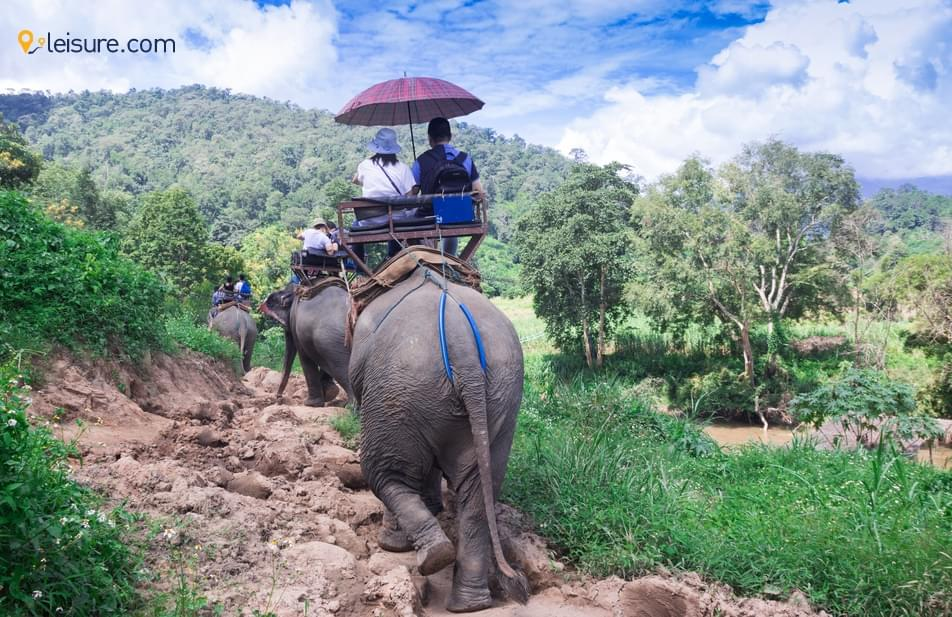 My Best Travel Experience From Thailand Tour