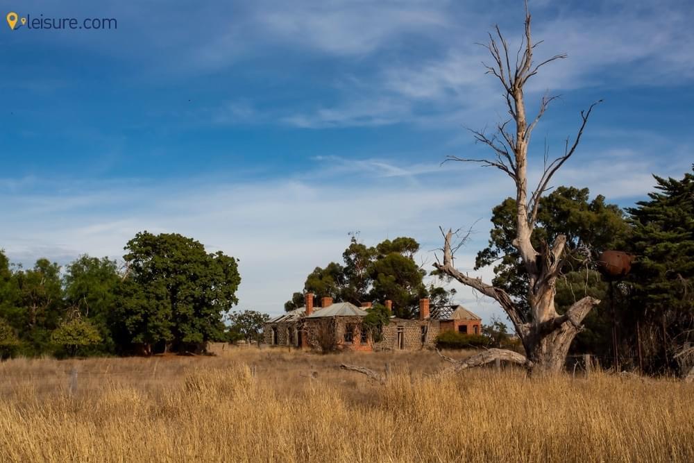 8 Days Zambia Safari