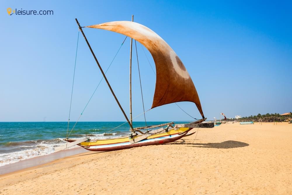 Vacation In Sri Lanka Tourvv