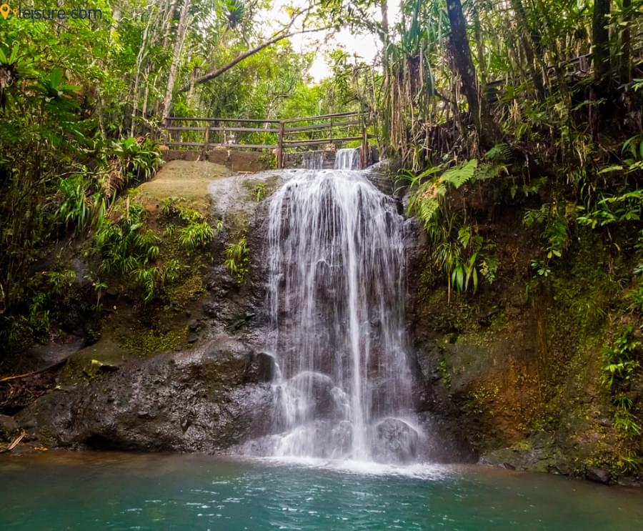 Fiji Tours sdfg