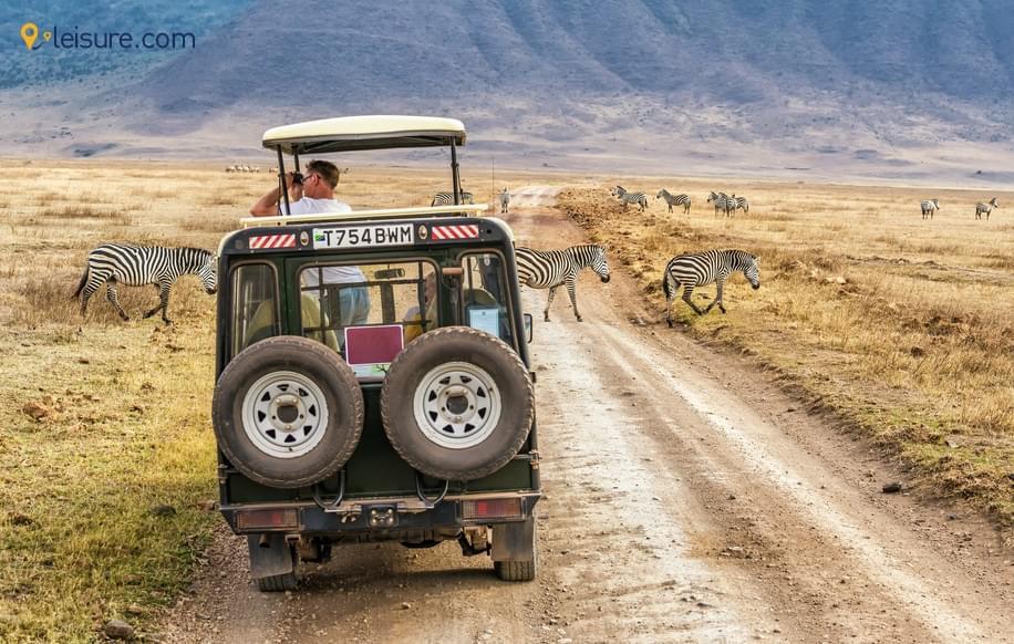 Travel Review: Best Kenya Tour