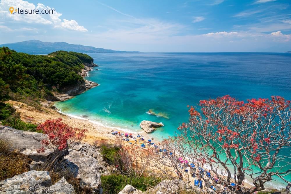 Visit in Albania dff