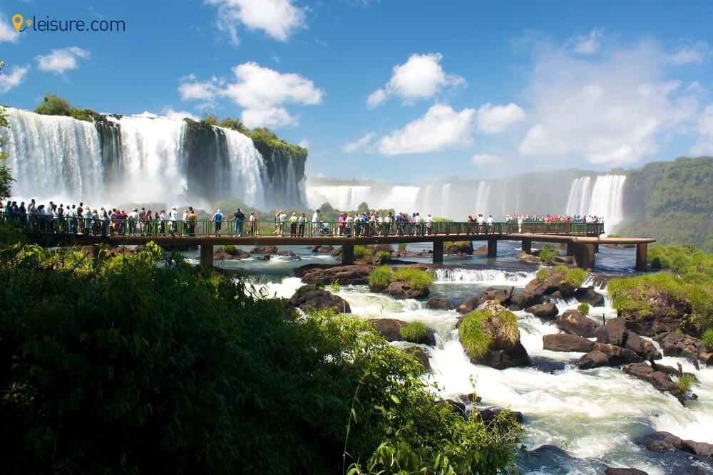 Exploring The Best Of Brazil Wildlife With This Latin America Backpacking Tour