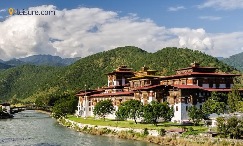 Himalayan Mystic ss
