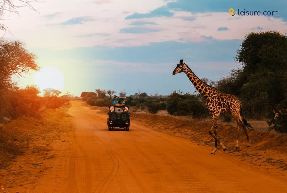 Amazing Tour Of kenya