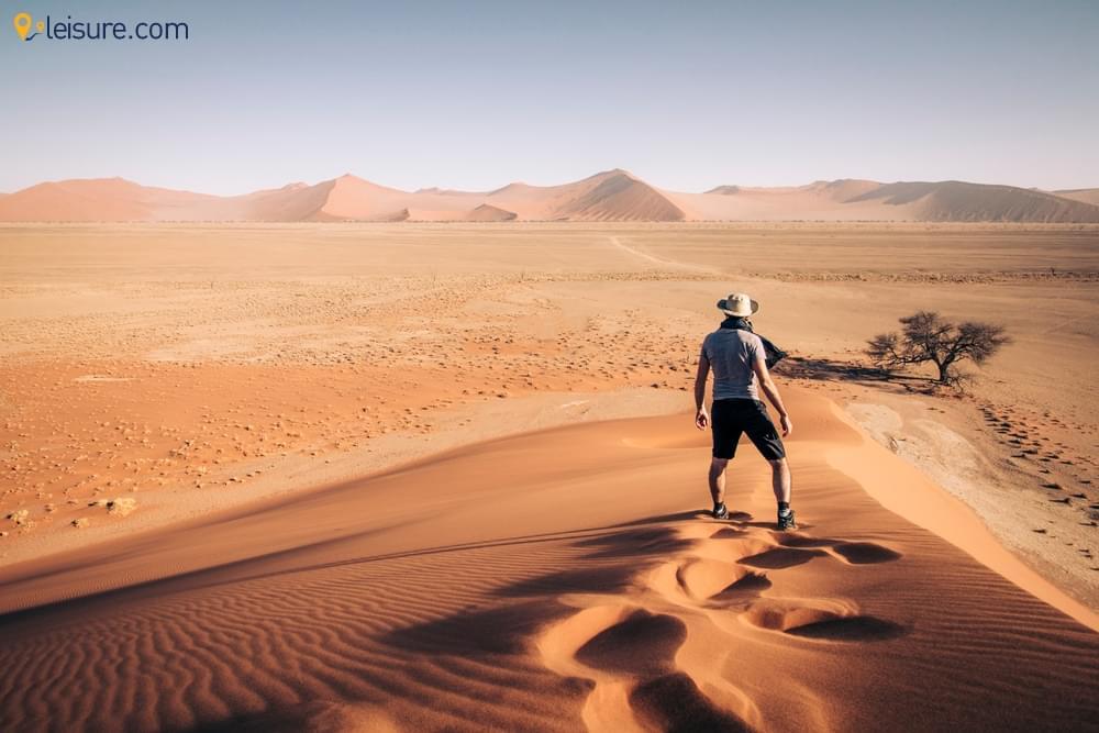 Namibia Safari Adventure