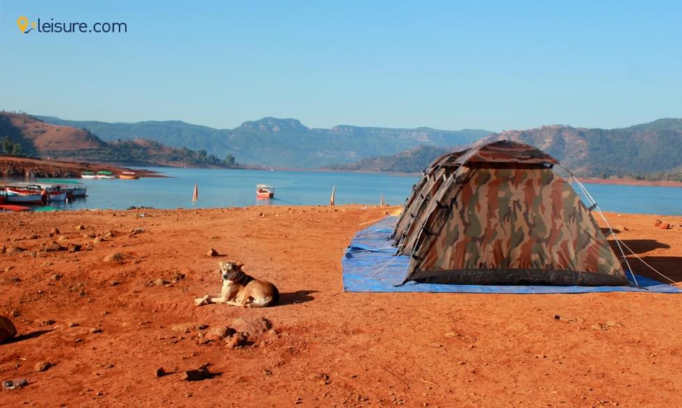 Engage Yourself Majestically with Awesome 10-Days Kenyan Safari Vacation