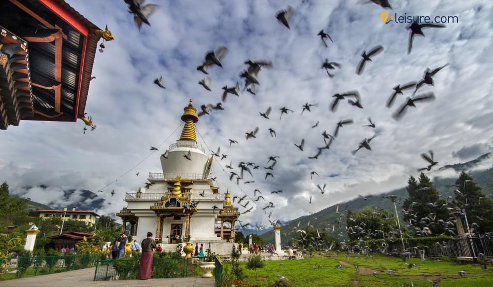 Himalayan Mystic cc