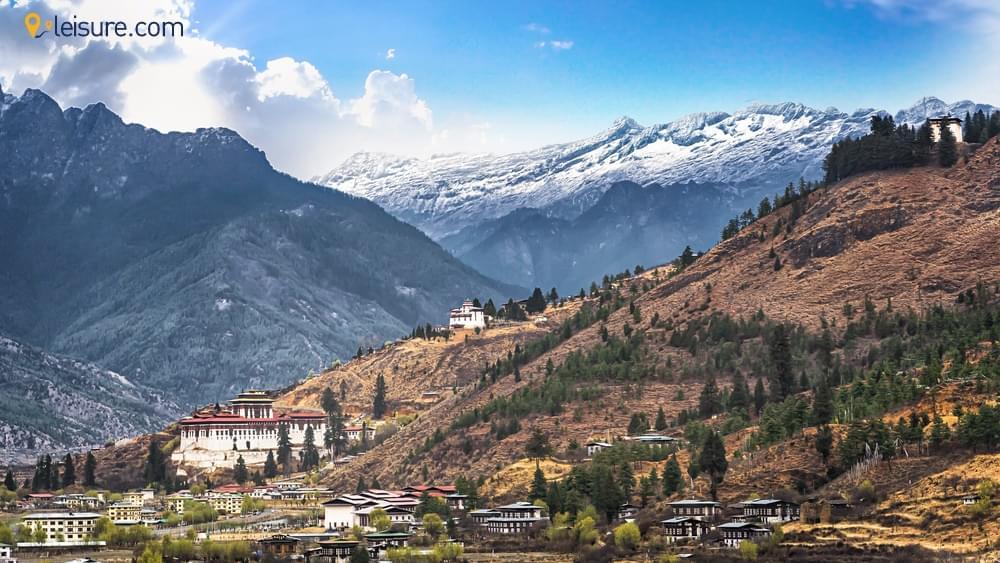 Himalayan Mystic s