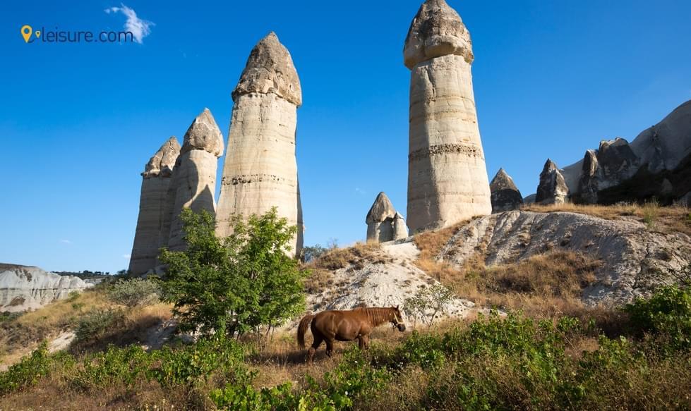 Excellent And Memorable Turkey Tour
