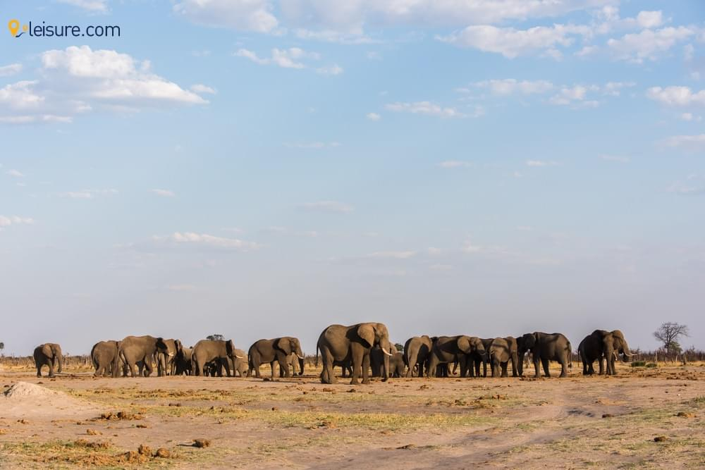 dfVisit in Botswana in