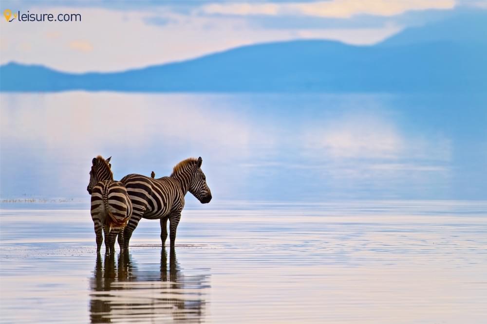 Tailormade Tanzania